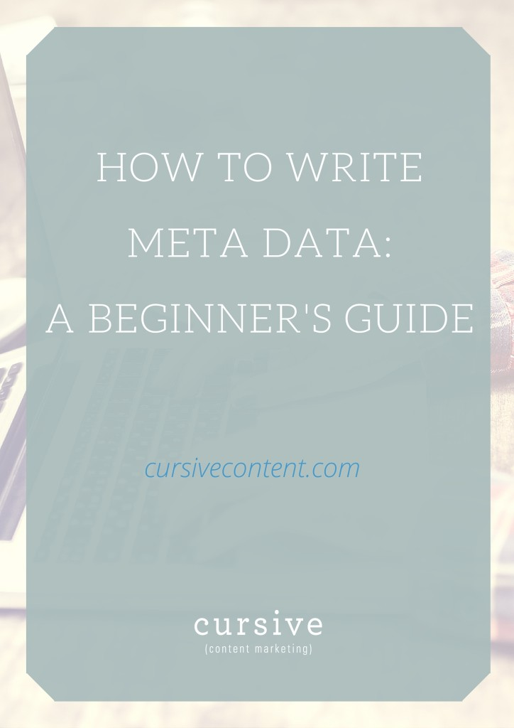 A Beginner's Guide to Meta Data Development